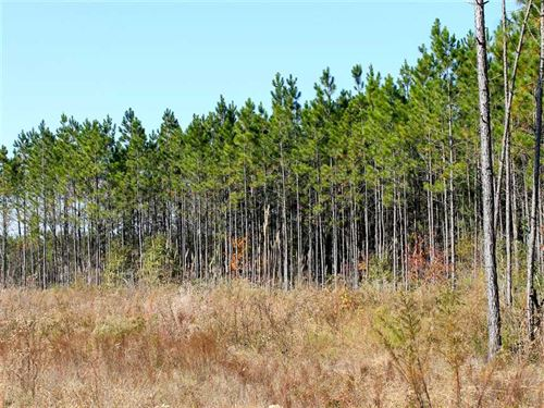 150-acres-wilcox-county-georgia-abbeville-wilcox-county-georgia-134049-8mmZMz